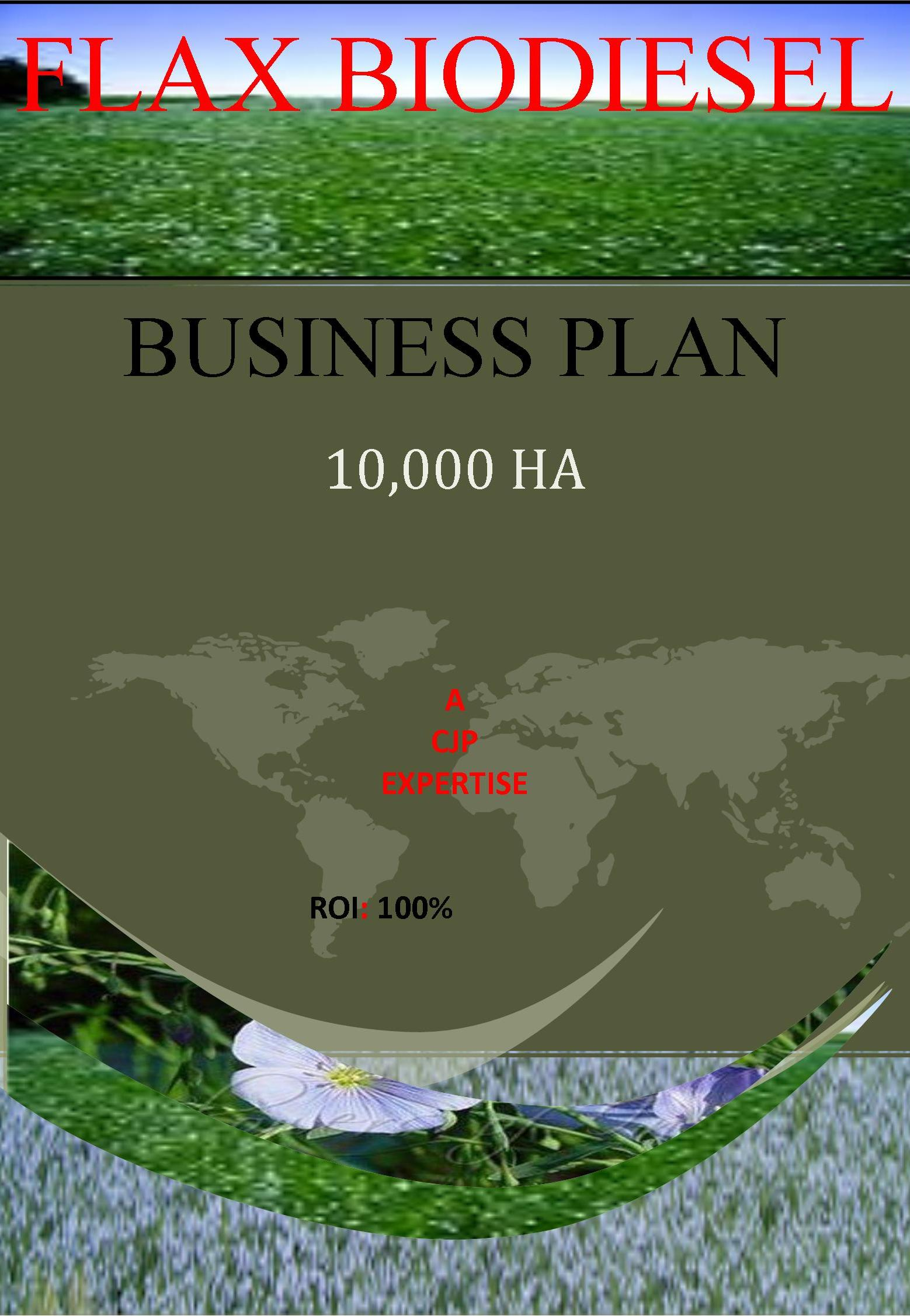 flax biodiesel business plan