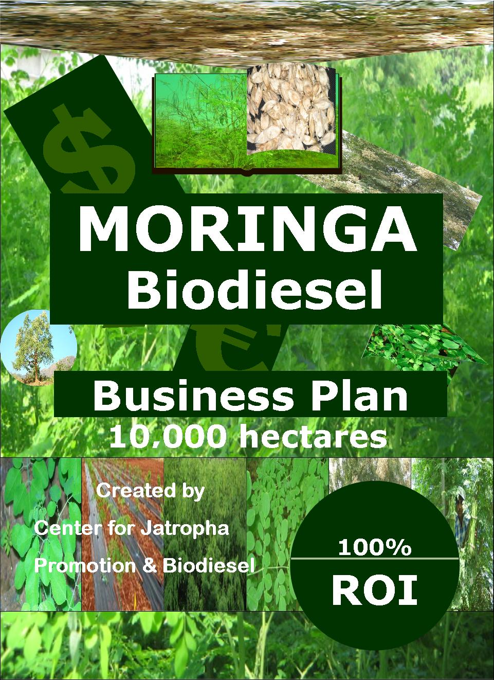 Moringa biodiesel business plan 10 k