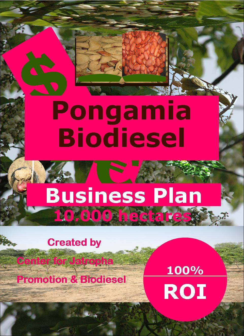 pongamia biodiesel business plan 10 k ha