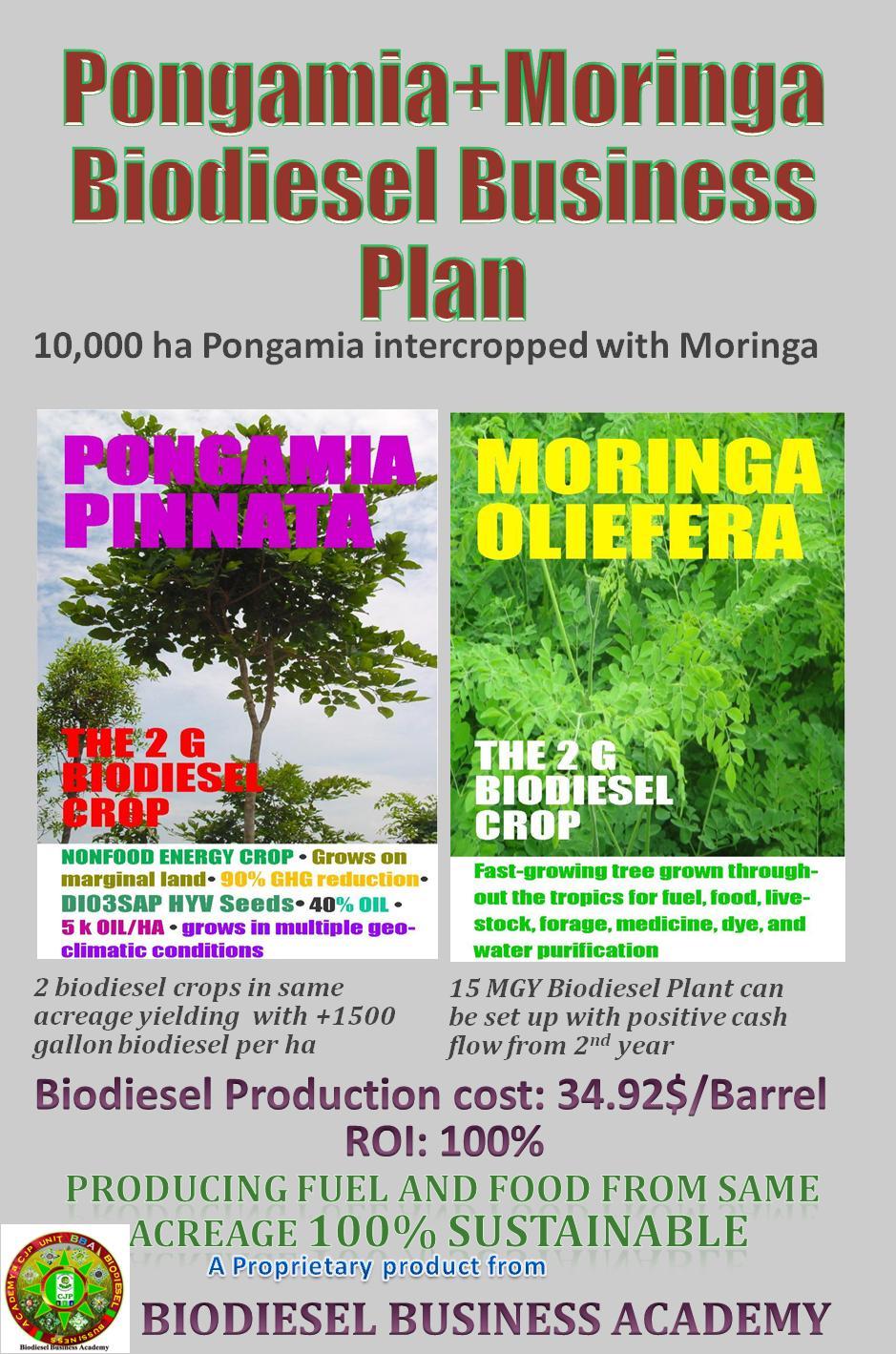 MORINGA+PONGAMIA BIODIESEL