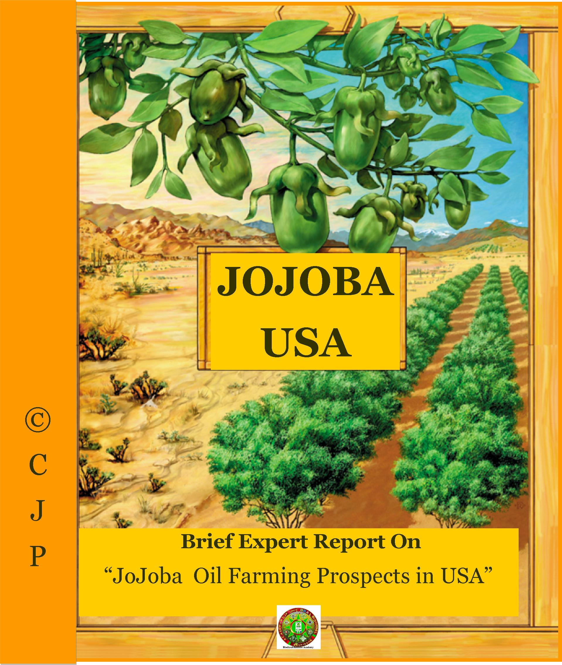 country report jojoba USA