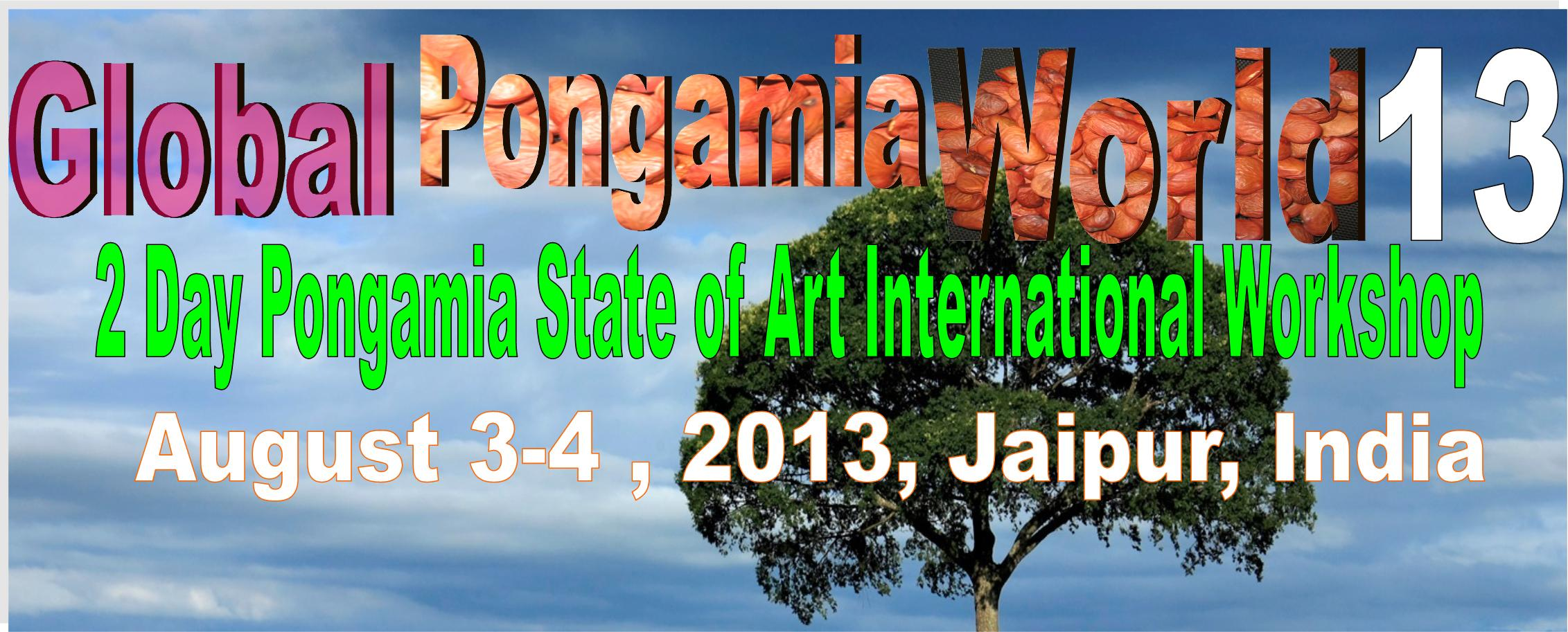 global pongamia world 2013